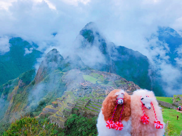 祕魯Perú|馬丘比丘Machupicchu前往交通攻略與注意事項(2018.02)